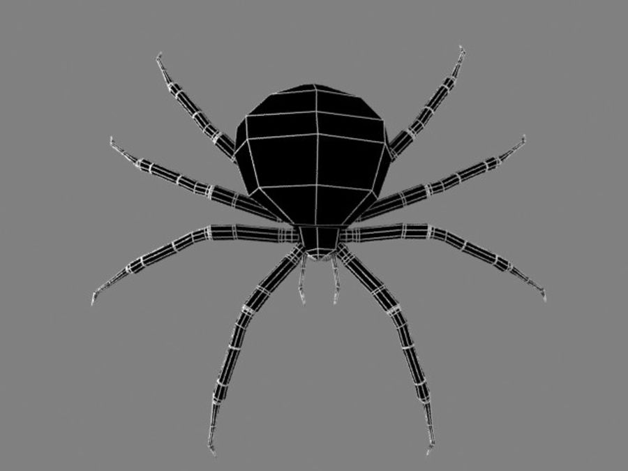 Shamrock Spider royalty-free 3d model - Preview no. 2