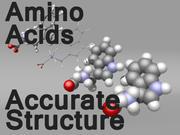 Amino Acids 3d model