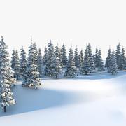 Spruce Trees 3d model