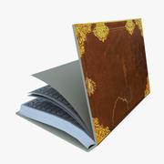 Book Rig 3d model