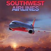Southwest Airlines 3d model