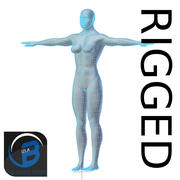 RIGGED Muscular Woman Base Mesh HIGH POLY 3d model