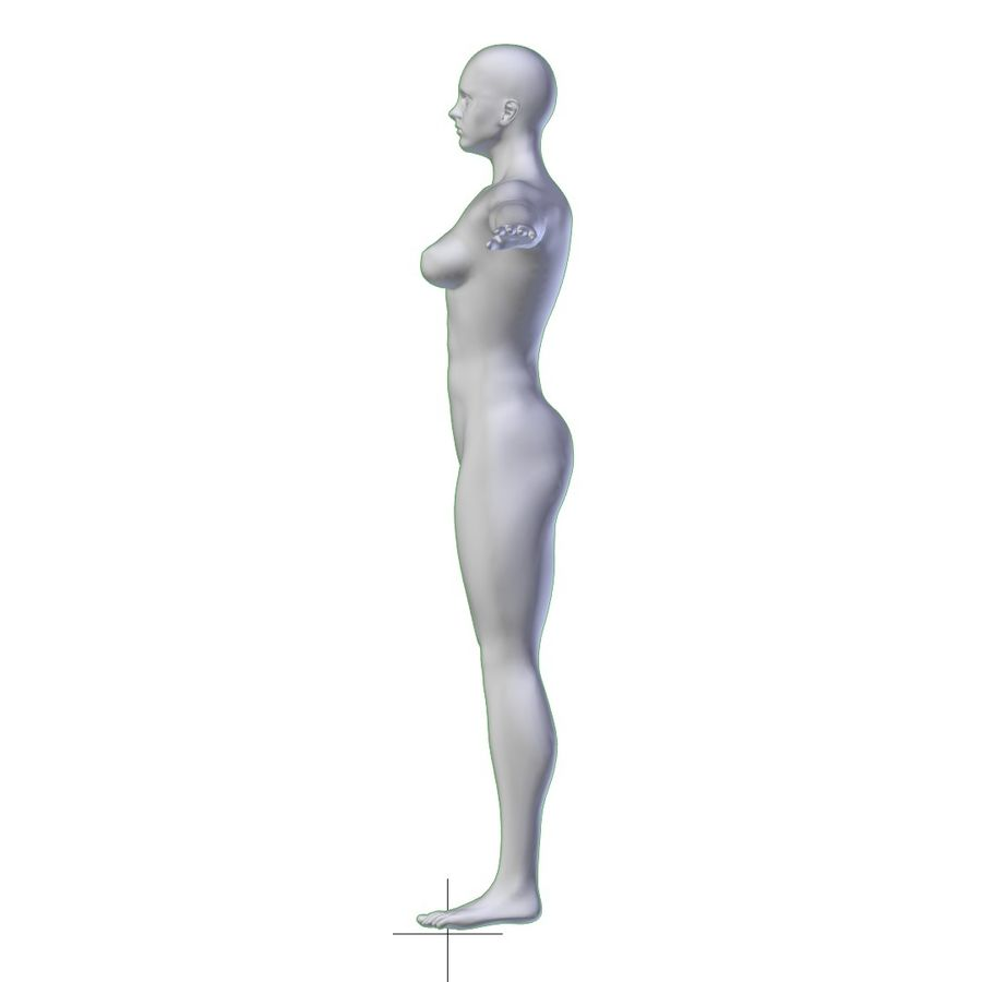 RIGGED Muscular Woman Base Mesh HIGH POLY royalty-free 3d model - Preview no. 12