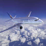 Continental Airlines 3d model