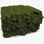 Çim Toprak Cliff Reef 3d model