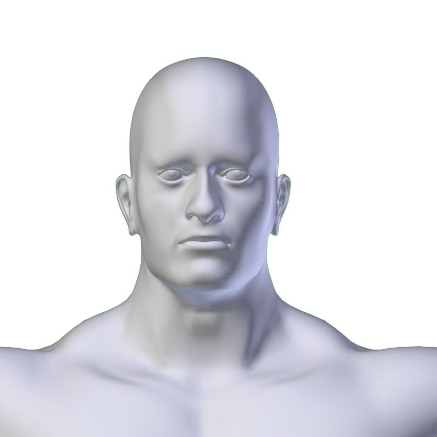 RIGGED Muscular Man Base Mesh HIGH POLY royalty-free 3d model - Preview no. 5