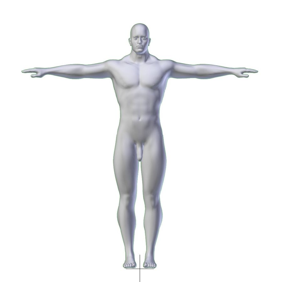 RIGGED Muscular Man Base Mesh HIGH POLY royalty-free 3d model - Preview no. 8