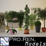 Collezione Pot Plants vol.01 3d model