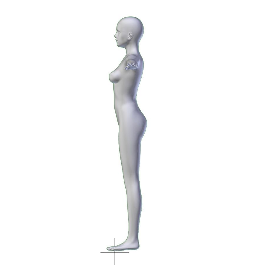 RIGGED Young Woman Base Mesh HIGH POLY royalty-free 3d model - Preview no. 12