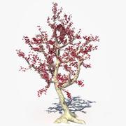 Czerwony kwiat drzewo 3d model