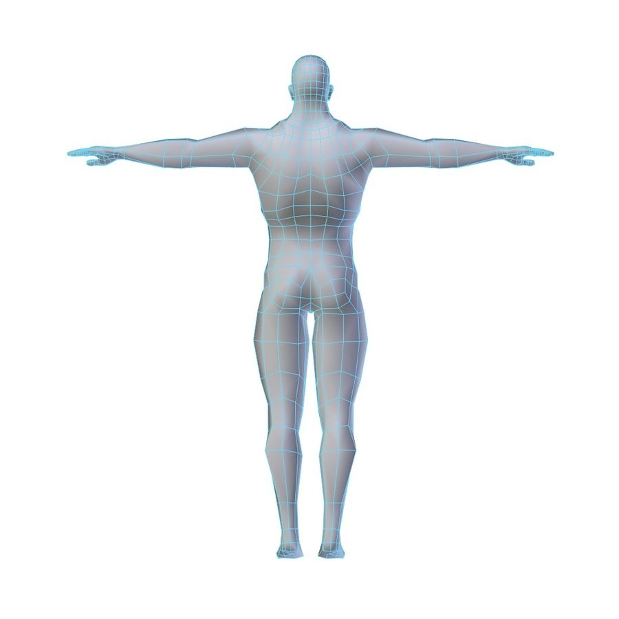 Muscular Man Base Mesh LOW POLY royalty-free 3d model - Preview no. 3