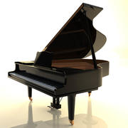 Grote piano 3d model