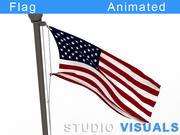 깃발 3d model