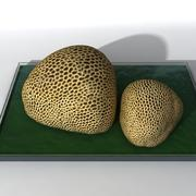 Coral Rock 3 modelo 3d