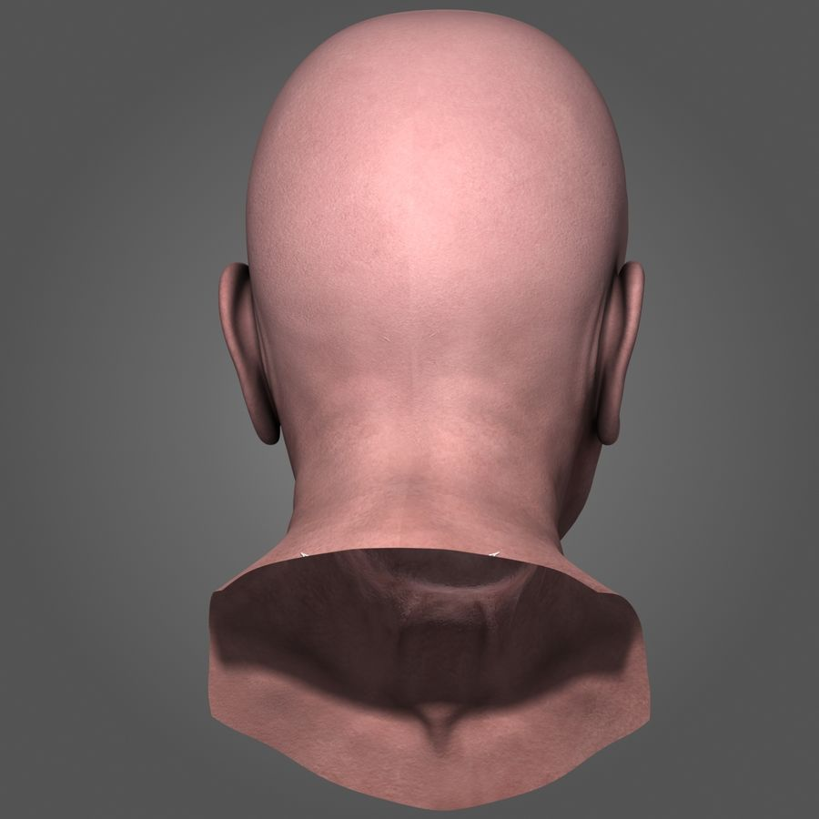Old Man Head royalty-free 3d model - Preview no. 5