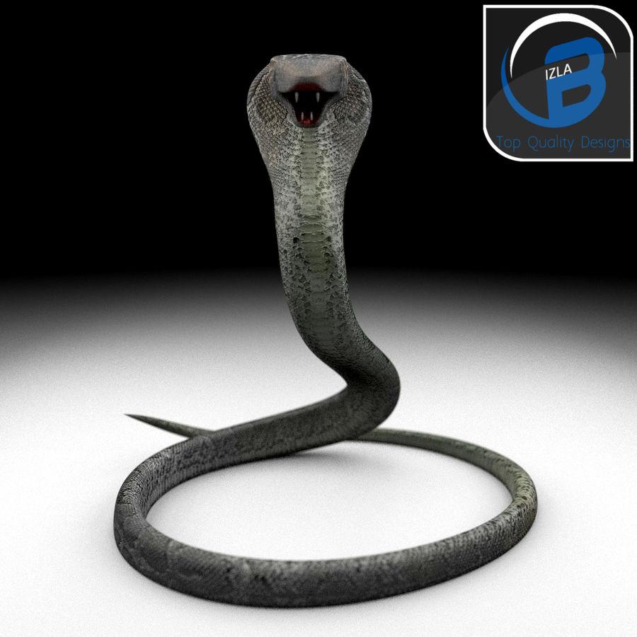 眼镜蛇 royalty-free 3d model - Preview no. 3