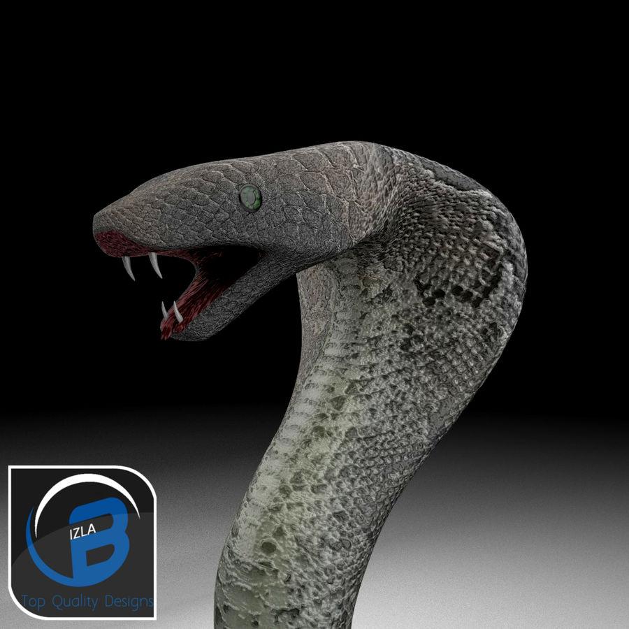 眼镜蛇 royalty-free 3d model - Preview no. 1