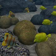珊瑚礁 3d model