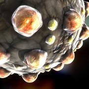 Masern-Virus 3d model