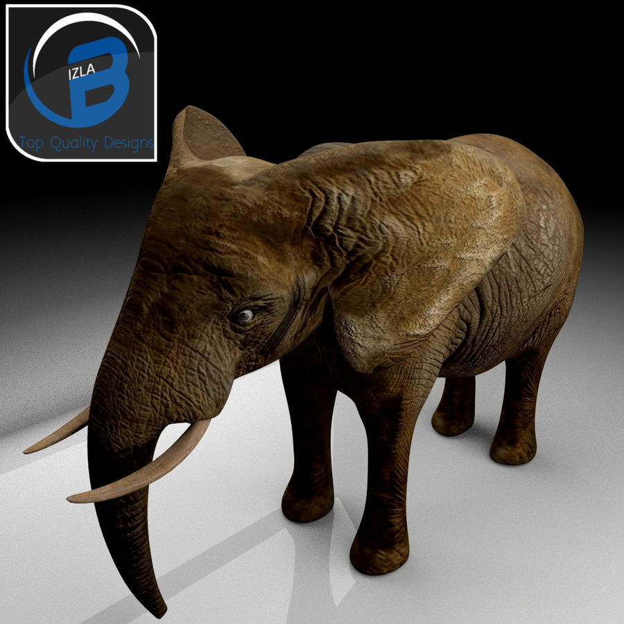 African Elephant royalty-free 3d model - Preview no. 5