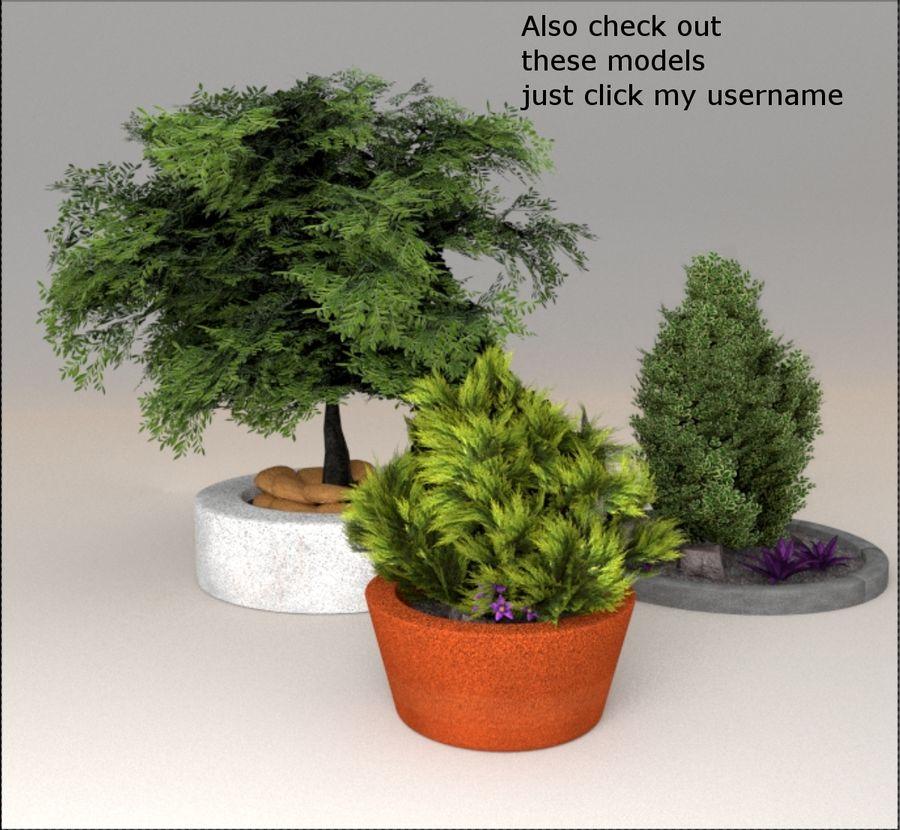 Cherry blossom park royalty-free 3d model - Preview no. 13