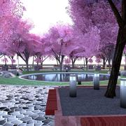 Cherry blossom park 3d model
