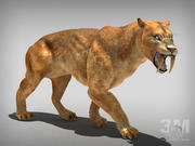 sabertooth tiger 3d model