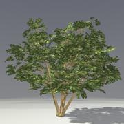 Arbuste Lowpoly 3d model