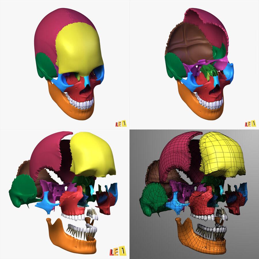 Anatomie complète de la tête masculine royalty-free 3d model - Preview no. 30