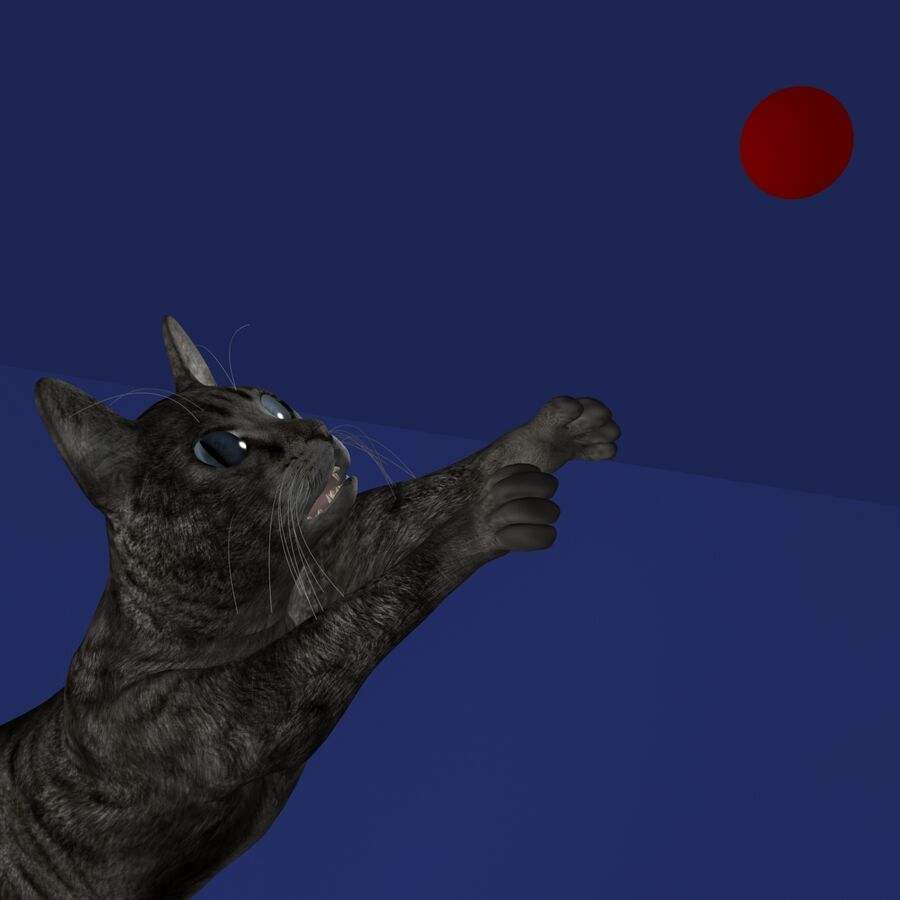 Cat Rigged royalty-free 3d model - Preview no. 11