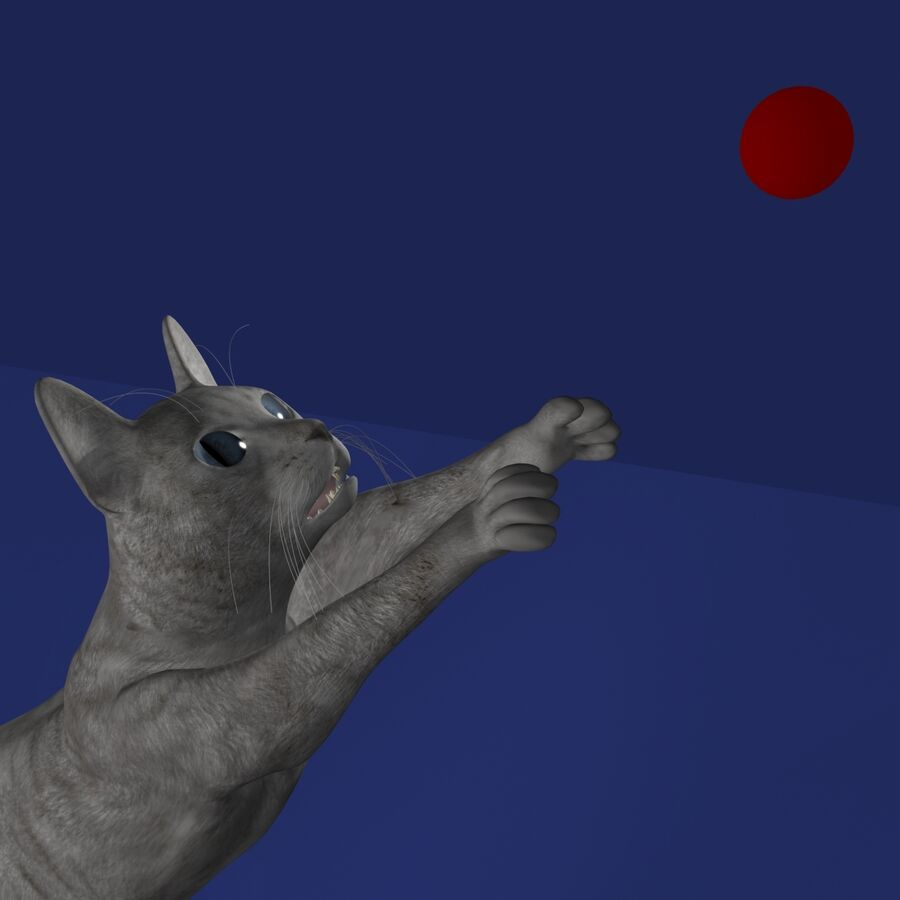 Cat Rigged royalty-free 3d model - Preview no. 12