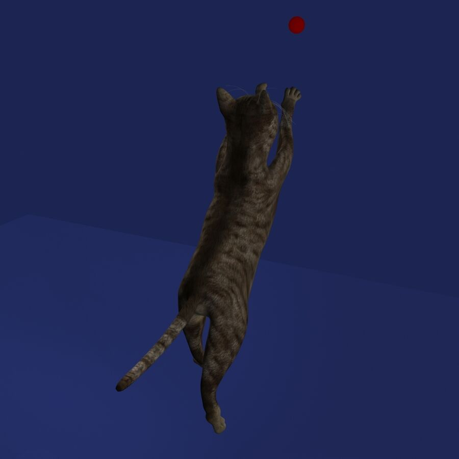 Cat Rigged royalty-free 3d model - Preview no. 16