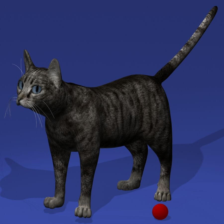 Cat Rigged royalty-free 3d model - Preview no. 2