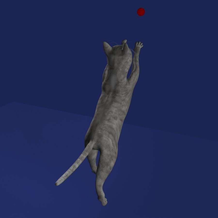 Cat Rigged royalty-free 3d model - Preview no. 15