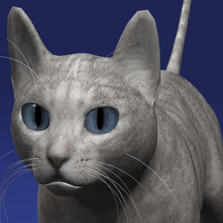 Cat Light royalty-free 3d model - Preview no. 7