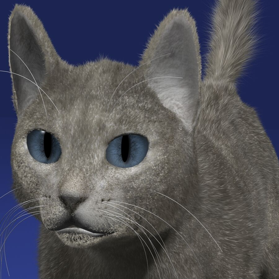 Cat Light royalty-free 3d model - Preview no. 6