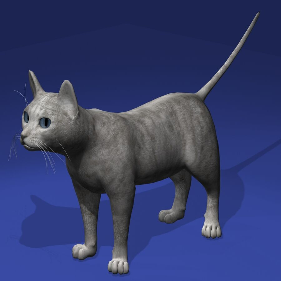Cat Light royalty-free 3d model - Preview no. 3