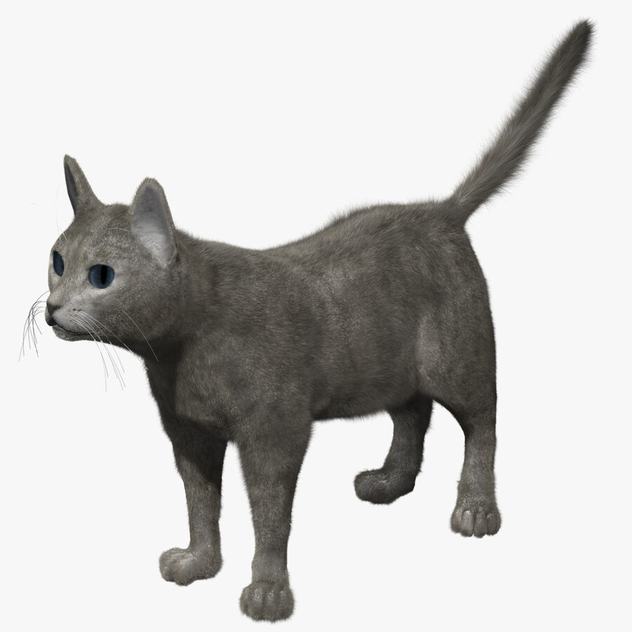 Cat Light royalty-free 3d model - Preview no. 1