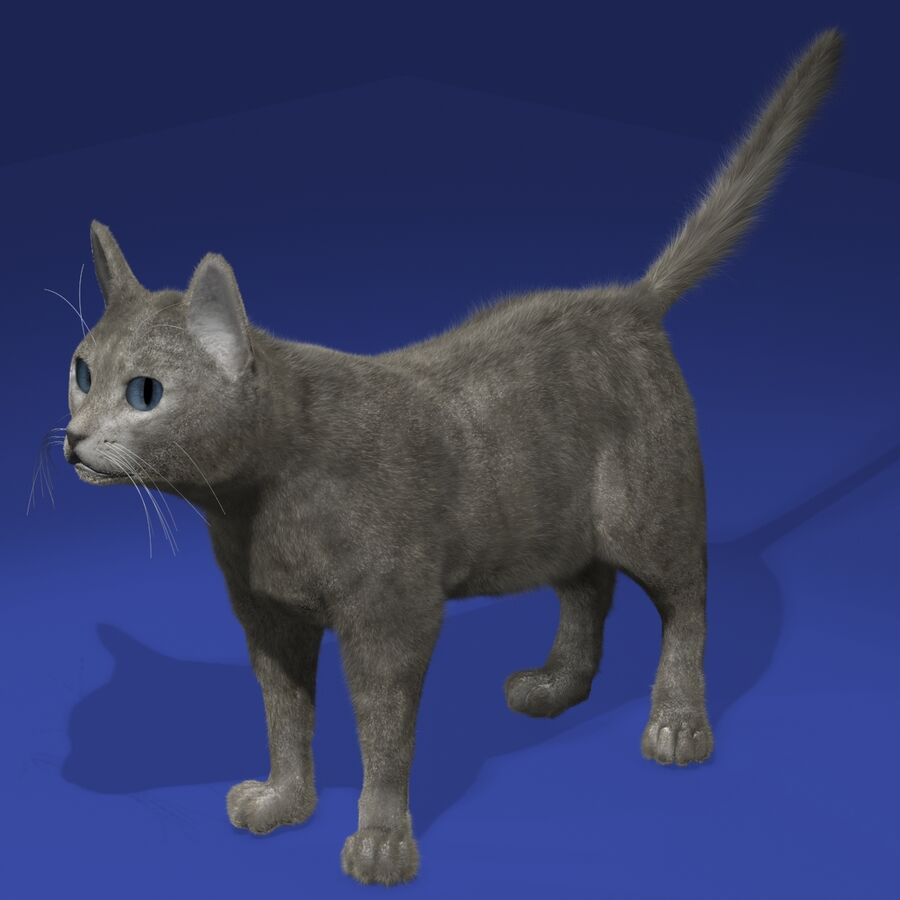Cat Light royalty-free 3d model - Preview no. 2