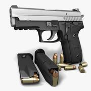 Sig Sauer P229ツートーン9mm 3d model