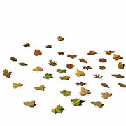 Leafs on the ground 01 3d model