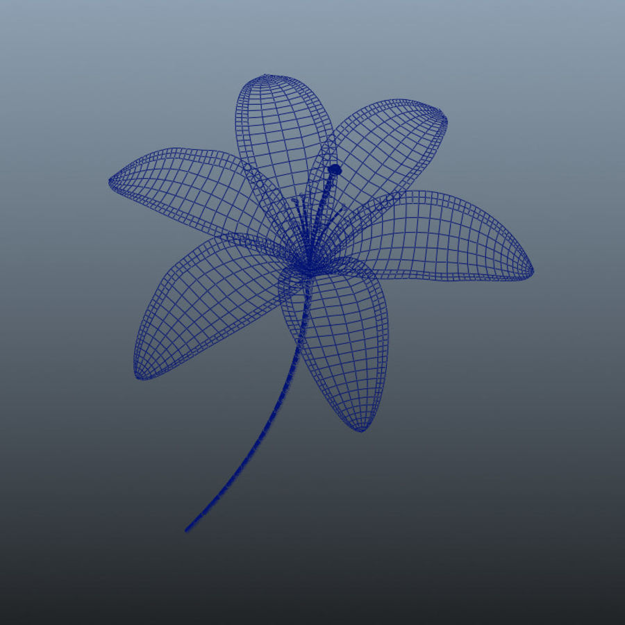 Blooming Lily Flower royalty-free 3d model - Preview no. 4