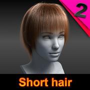 Cheveux courts02 3d model