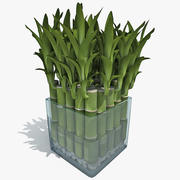 Bambu da Sorte 3d model