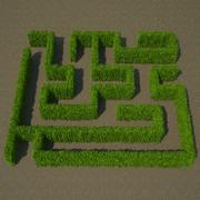 Carpinus Betulus Hedge Kit 3d model