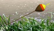 Fishing Float 3d model