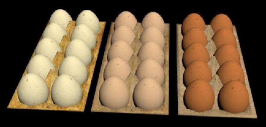 Eggs Set royalty-free 3d model - Preview no. 7