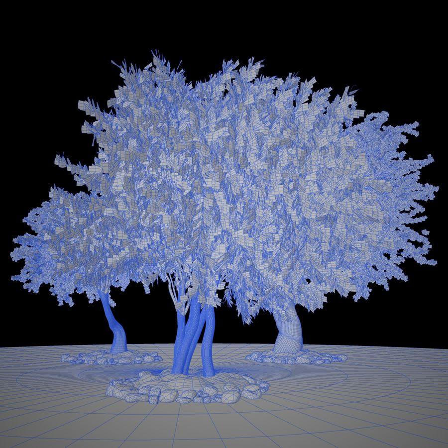 Cena de planta de árvore realista Olea royalty-free 3d model - Preview no. 5