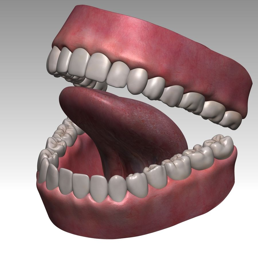 Bouche royalty-free 3d model - Preview no. 4