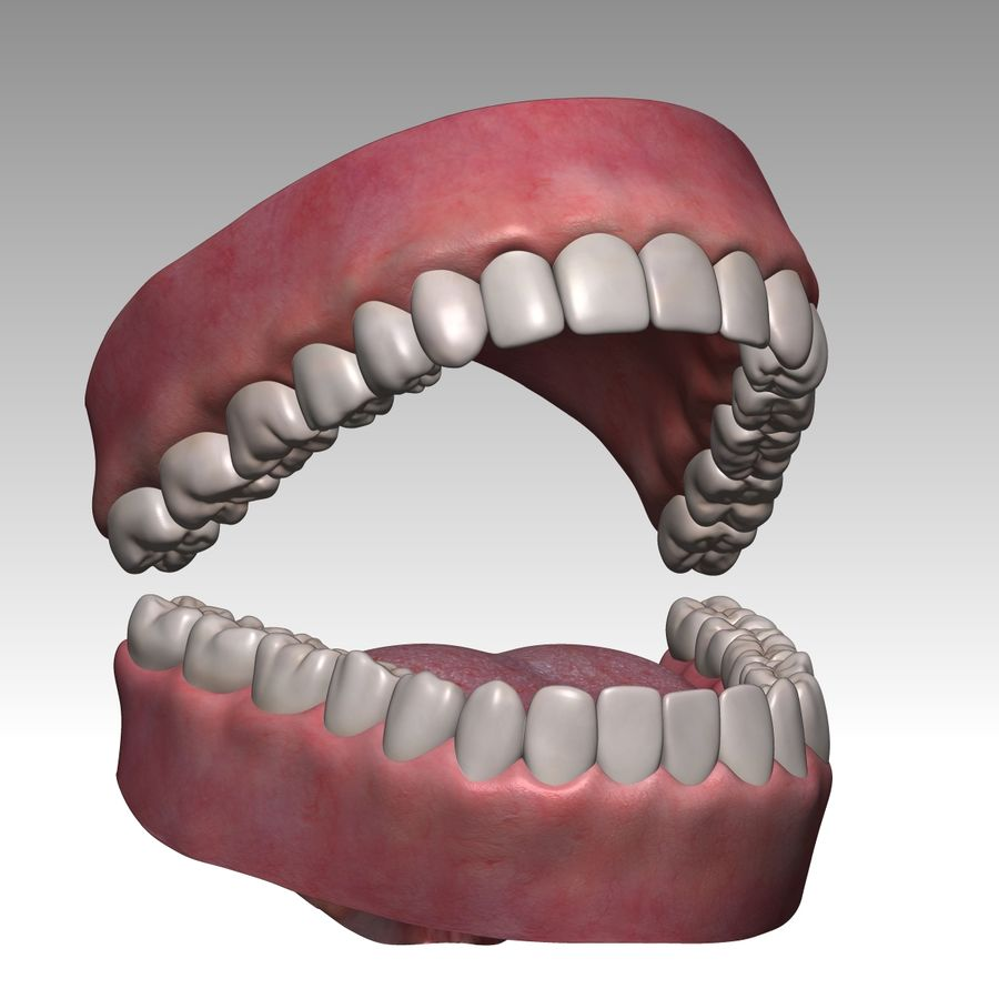 Bouche royalty-free 3d model - Preview no. 5